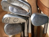 Discovering Hickories